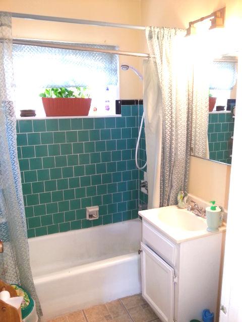 Hot Tub or Shower? «
